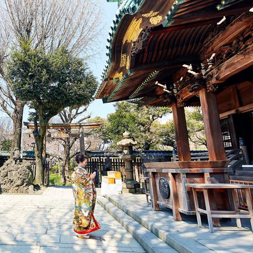 牛嶋神社×櫻茶ヤプラン