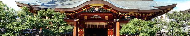 神社挙式 × タピルージュ 披露宴プラン